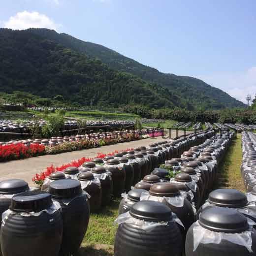鹿児島産の黒酢は日本一と言われ美人になれると評判
