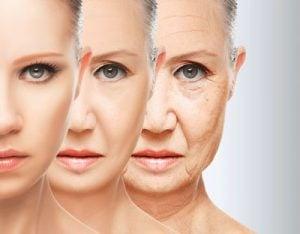活性酸素を取り除くことで老化を防いでくれます