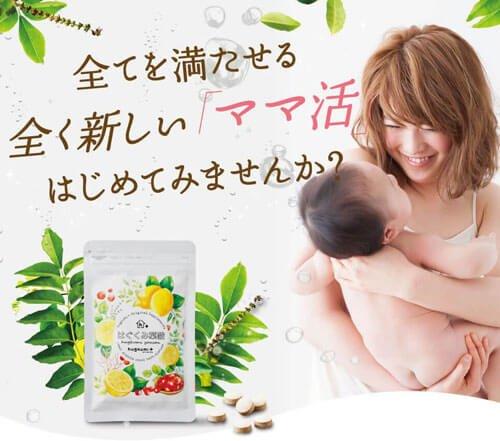 はぐくみ葉酸は管理栄養士が監修!赤ちゃんのための栄養素バランスを第一に考えてくれる